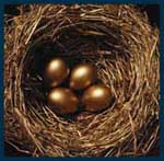 Like geese that lay golden eggs, we create foundations that benefit society in perpetuity